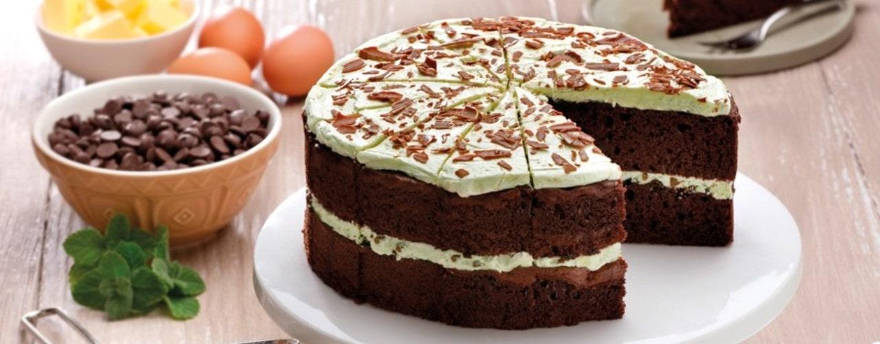Gluten Free Mint Chocolate Chip Cake